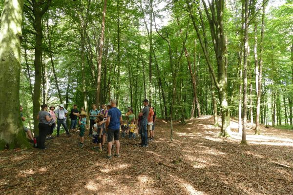 01 Kaiserwald 600x400 - Veranstaltungen Juli-Oktober 2020