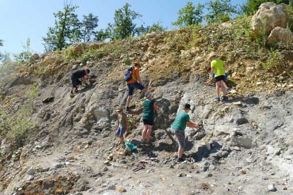 06 Fossilien suchen 600x400 - Veranstaltungen Juli-Oktober 2020