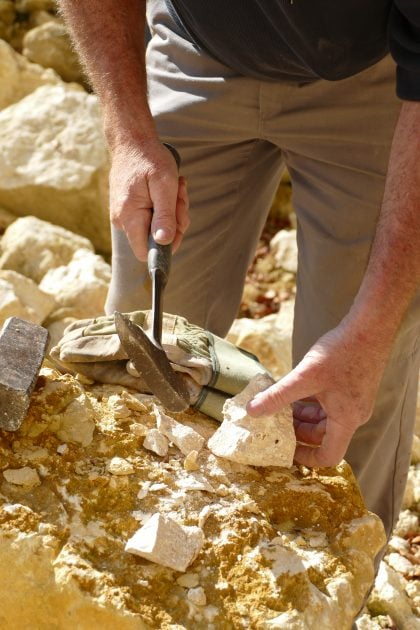 09 Fossilien 420x630 - Fossilien suchen und präparieren