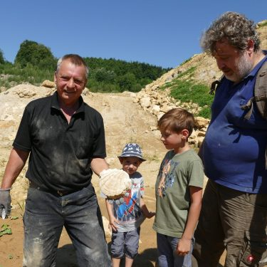 fossilien 375x375 - Sommerhits für Kids 2021