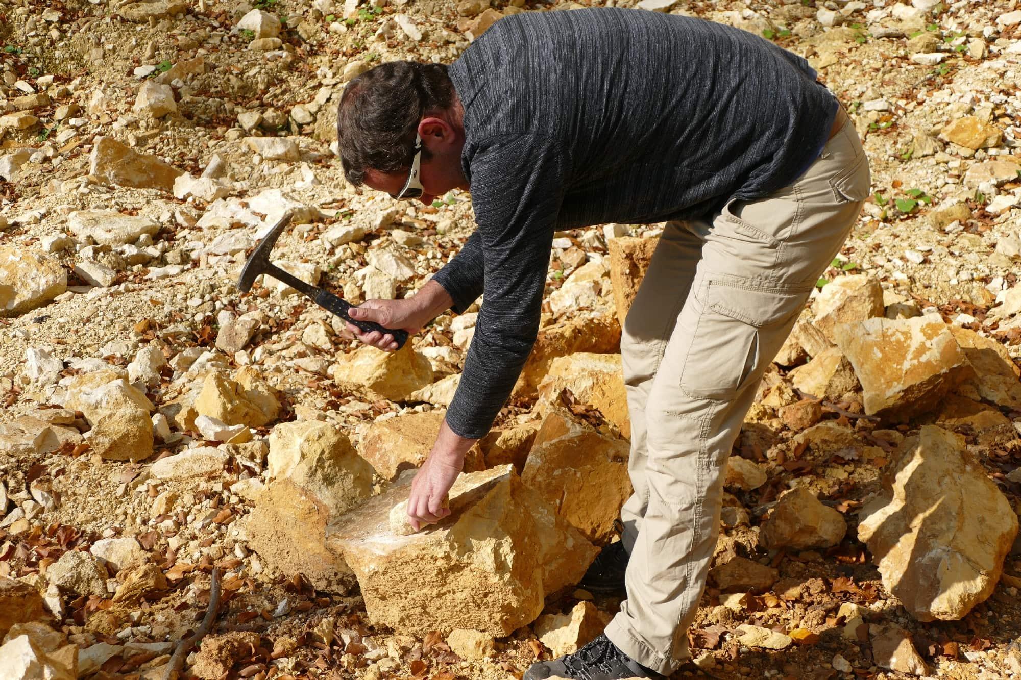 veranstaltungen 2019 fossilien1 - Fossilien suchen und präparieren