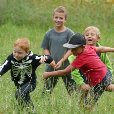 waldtage2 375x375 - Sommerhits für Kids 2021